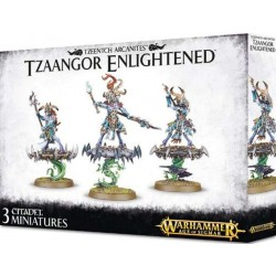 Games Workshop Tzaangor Enlightened Action Figure