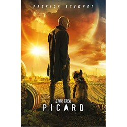 Star Trek 61 x 91.5 cm (Picard Number One) Maxi Poster