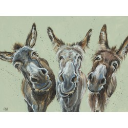 Louise Brown (Wise Asses) Canvas Print 30 x 40cm