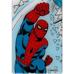 Spiderman Metal Magnet