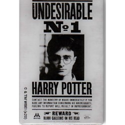 Harry Potter Undesirable No. 1 Metal Magnet