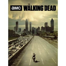 The Walking Dead (Road) Canvas Print 60x80cm