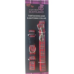 Tartan Collar and Lead