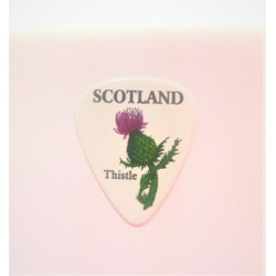 Plectrum scottish Thistle