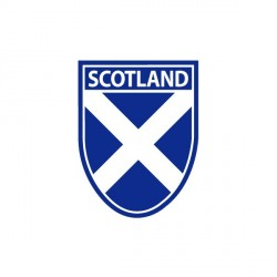Saltire Car Sticker  10cm by 6cm