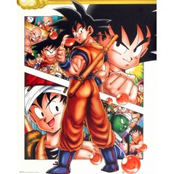 "GB eye 40 x 50 cm ""Collage"" Dragon Ball Mini Posters, Multi-Colour"