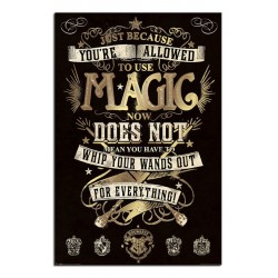 Harry Potter Magic Large Wall Poster New - Maxi Size 36 x 24 Inch