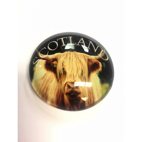 Highland Cow Glass magnet