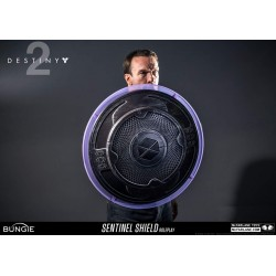 Destiny 2 Role-Play Accessory Sentinel Shield