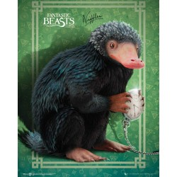 Fantastic Beasts and Where To Find Them, Niffler, Mini Poster 40x50cm